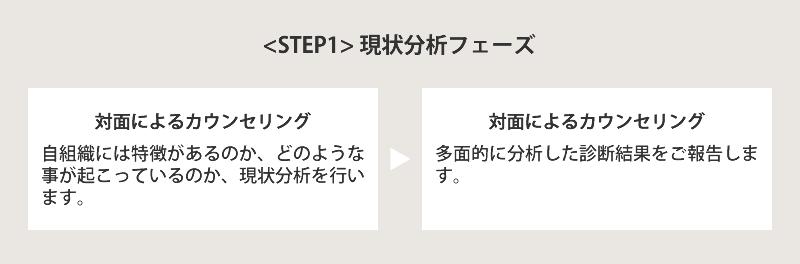 STEP1 現状分析フェーズ